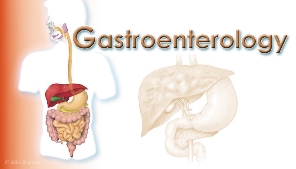 definisi alat alat kesehatan gastroenterology and urology. Black Bedroom Furniture Sets. Home Design Ideas